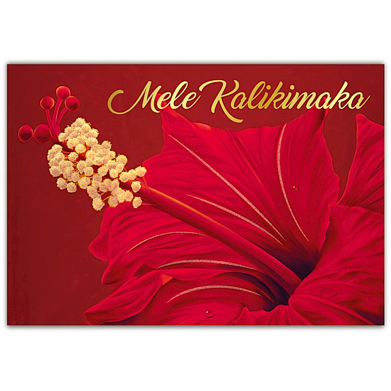 Boxed Christmas Cards.Red Hibiscus Boxed Christmas Cards By Island Heritage 62980000
